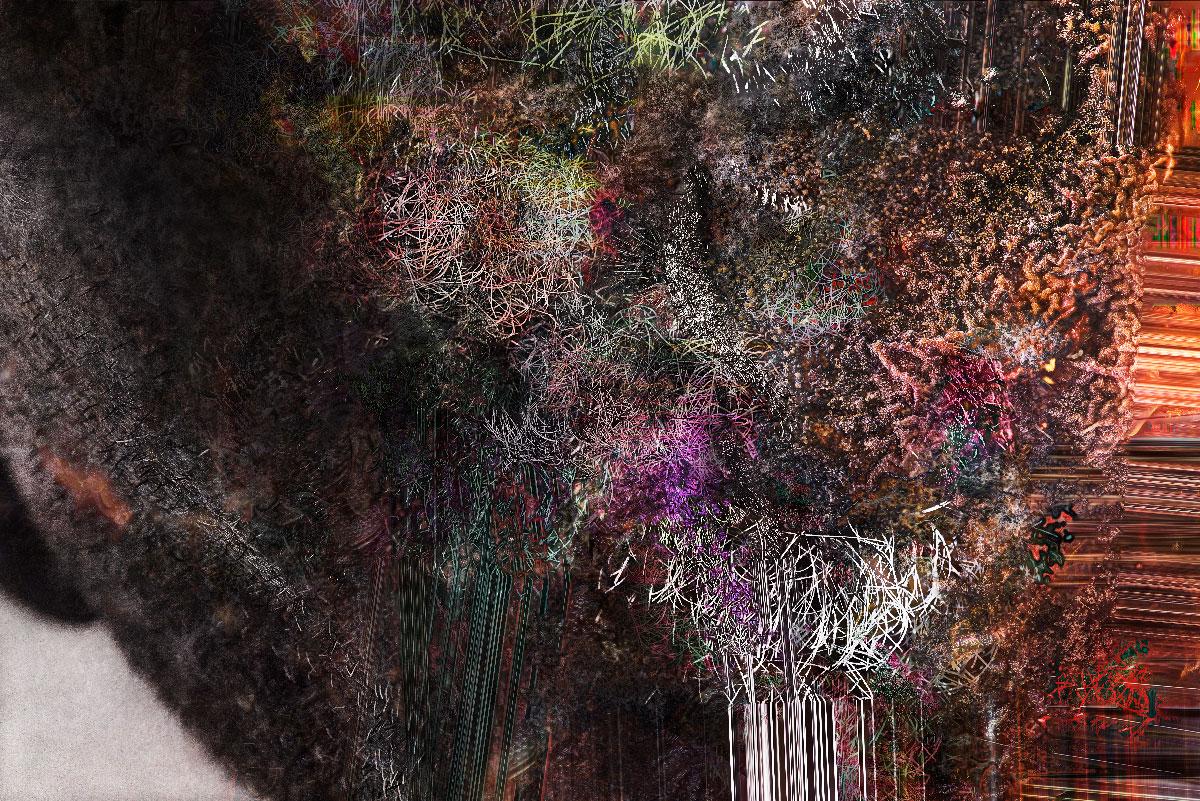 Série Flux - Fleur de peau 2019-07-08 - tirage numérique - 100 x 70 cm - 2019.
